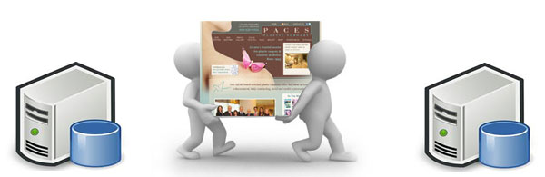 procedure to transfer a website